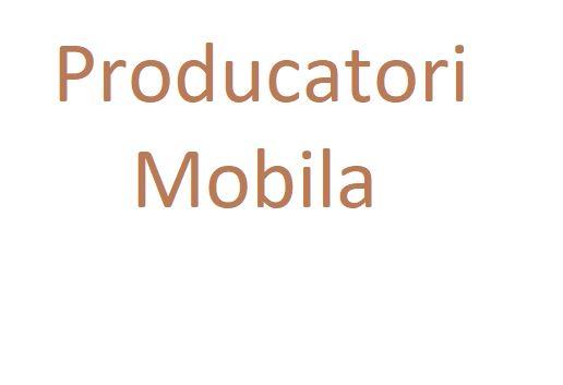 Producatori Mobila